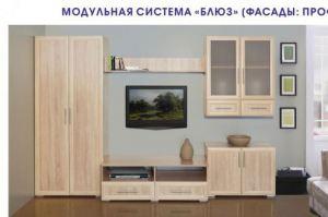 Модульная гостиная Блюз - Мебельная фабрика «Элегия»
