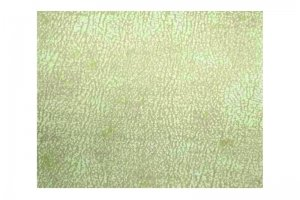 Обивочная ткань Martell 02 - Оптовый поставщик комплектующих «Сарма»