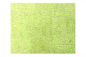 Обивочная ткань Martell 03 - Оптовый поставщик комплектующих «Сарма»