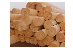 Оцилиндрованное бревно - Оптовый поставщик комплектующих «ЛесТорг-Ишимбай»