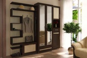 Прихожа мебель 5 - Мебельная фабрика «Алекс-Мебель»