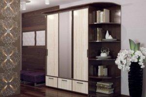 Шкаф-купе №1 - Мебельная фабрика «Профи»