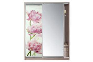 Шкаф-купе 2-х дверный с зеркалом с фотопечатью - Мебельная фабрика «Боровичи-мебель»