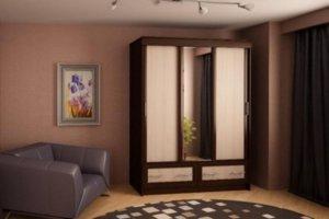 Шкаф-купе №4 - Мебельная фабрика «Профи»
