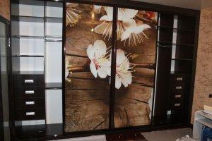 Шкаф-купе фасады стекло с фотопечатью  - Мебельная фабрика «Ваша мебель»