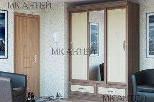 Шкаф-купе Модерн 2 - Мебельная фабрика «Антей»
