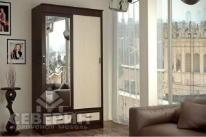 Шкаф-купе Модерн 2-х створчатый - Мебельная фабрика «Северин»