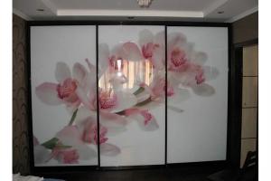 Шкаф-купе с фотопечатью - Мебельная фабрика «Анкор»