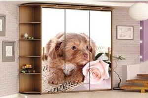Шкаф-купе с фотопечатью Лука - Мебельная фабрика «Мир Нестандарта»