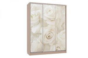 Шкаф-купе трехстворчатый Бассо 7 600 розы - Мебельная фабрика «Мебельсон»