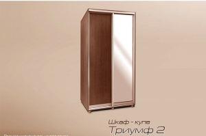 Шкаф-купе Триумф 2 - Мебельная фабрика «Триумф»