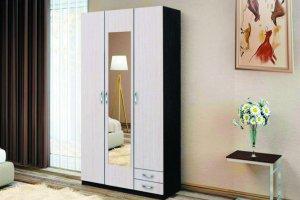 Шкаф распашной Эконом - Мебельная фабрика «Зарон»