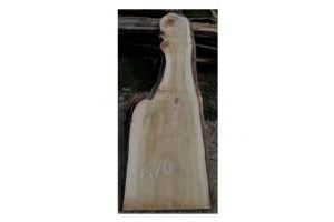 Слэб горного тополя, сухой № Т85 - Оптовый поставщик комплектующих «Черноморский шпон»