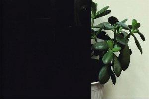 Стекло черное крашеное - Оптовый поставщик комплектующих «Роялти-Компани»