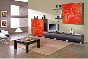 Стенка с фотопечатью - Мебельная фабрика «Мебель СаЛе»