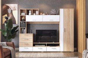 Стенка в гостиную Даллас - Мебельная фабрика «Можгинский лесокомбинат»