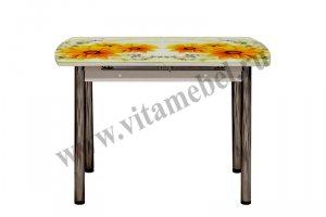 Стол 24 раздвижной с фотопечатью - Мебельная фабрика «Вита-мебель», г. Кузнецк