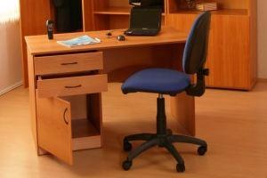 Стол письменный СПН1 120 6 - Мебельная фабрика «Карат-Е»