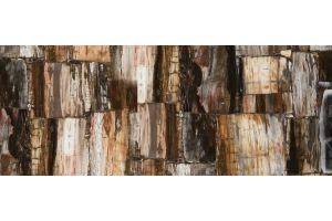 Столешница из кварца Caesarstone 8331 Petrified Wood Retro - Оптовый поставщик комплектующих «Глав Акрил»