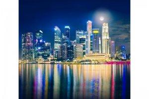 Ткань Купон Ночь в Сингапуре - Оптовый поставщик комплектующих «АГАТ»