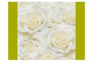 Велюр Купоны Цветы Бонита Вайт 1 - Оптовый поставщик комплектующих «Текстиль Плюс»