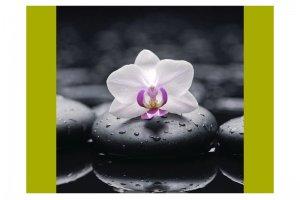 Велюр Купоны Цветы Орхидея Блэк - Оптовый поставщик комплектующих «Текстиль Плюс»
