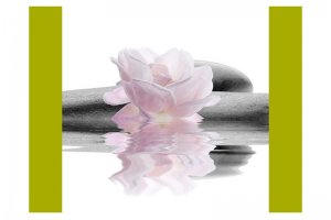 Велюр Купоны Цветы Орхидея Вайт - Оптовый поставщик комплектующих «Текстиль Плюс»