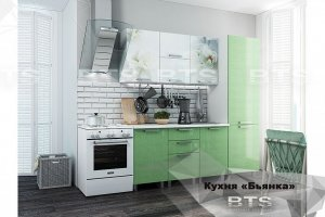 Зеленая кухня с фотопечатью Бьянка - Мебельная фабрика «BTS»